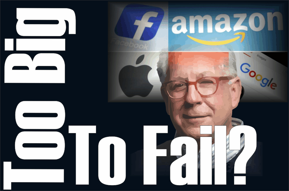 ", FB, AMZN, GOOG – ""Too Big To Fail?"""