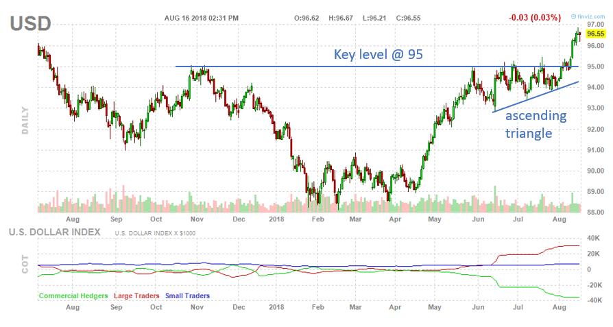 Daily Dollar Chart